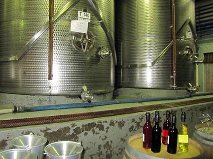 wijnenZuidAfrika_9_428x320_up